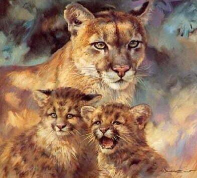 Cheetahs Diamond Dot Picture