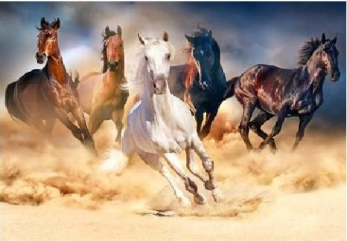Galloping Horses Diamond Dot Pictures