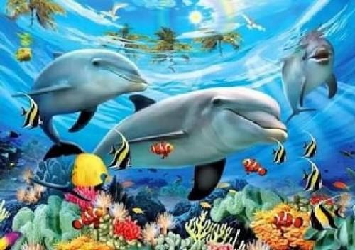 Dolphin Pod Underwater Diamond Dot Picture