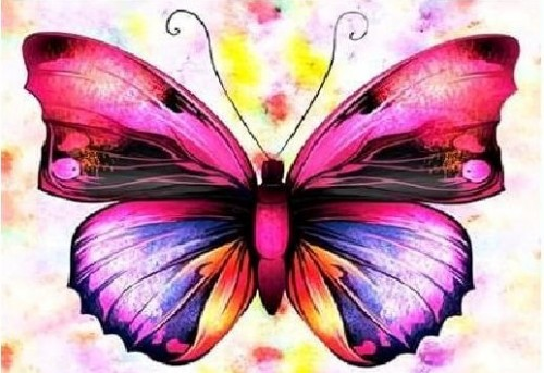 Colourful Butterfly Diamond Dot Picture