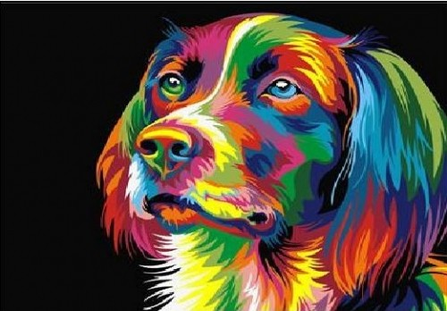 Courful Dog Diamond Dot Picture